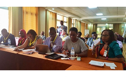 attendees at the aib africa chapter conference