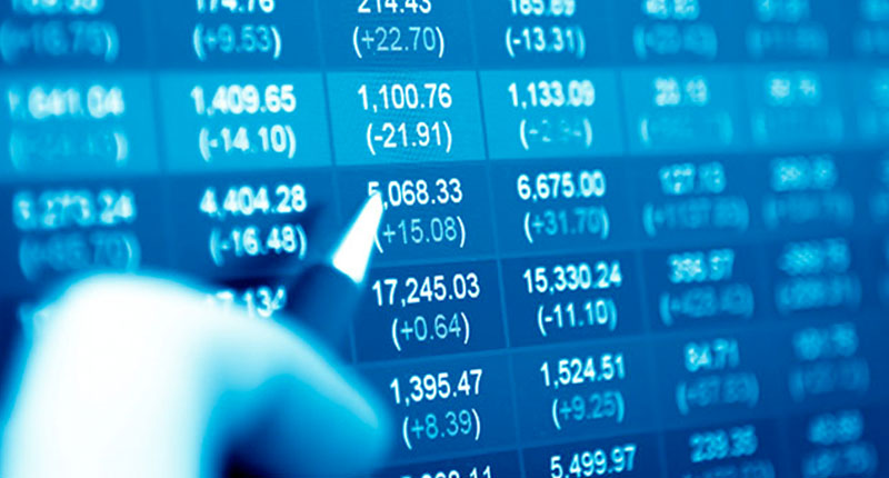 person examining international exchange rates