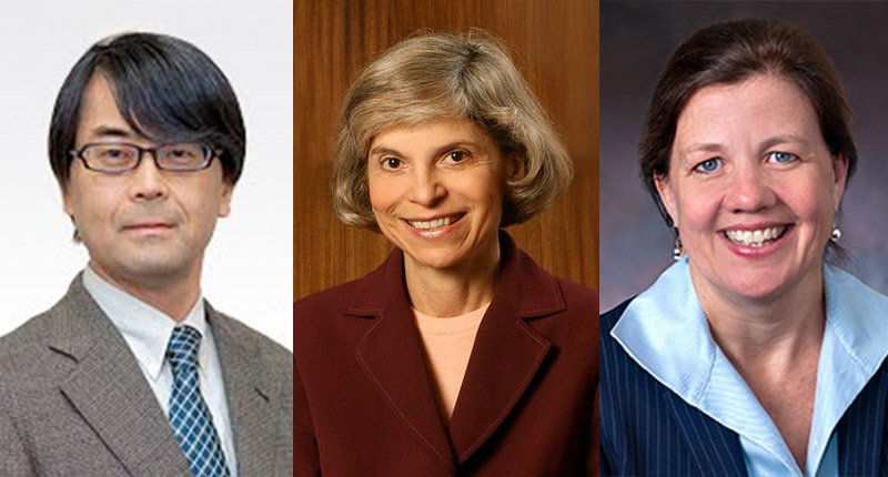 Kaz Asakawa, Maria Tereza Leme Fleury, and Jennifer Oetzel