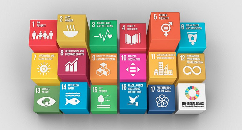 grapic listing the united nations sustainable development goals